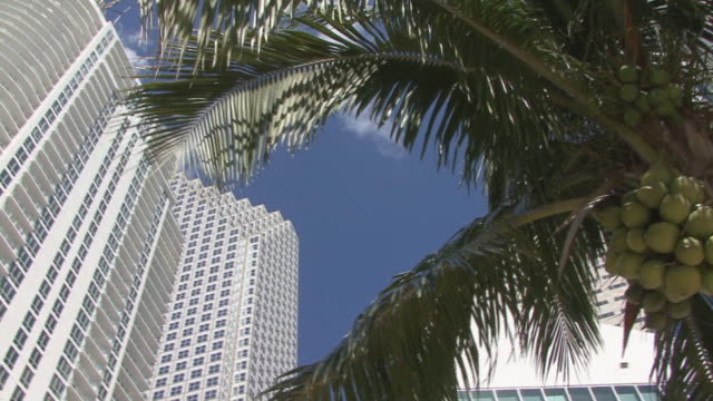 miami highrise building - penthouse stock videos and b-roll footage