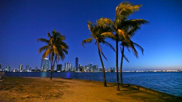 miami skyline - biscayne bay stock videos & royalty-free footage