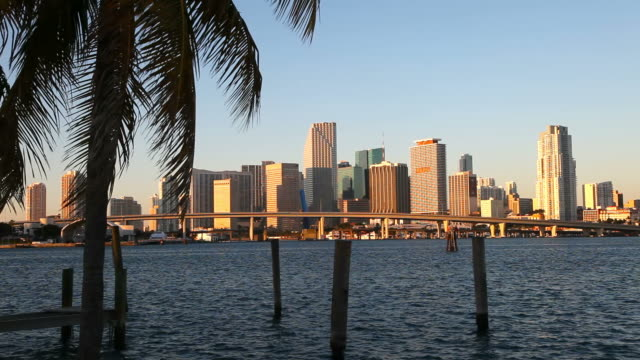 miami skyline - biscayne bay stock videos and b-roll footage