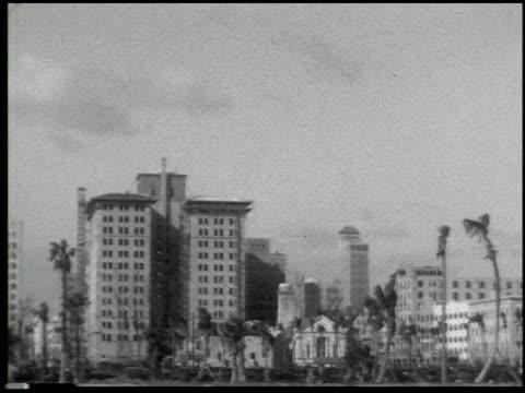 miami: the magic city - 10 of 10 - この撮影のクリップをもっと見る 2371点の映像素材/bロール