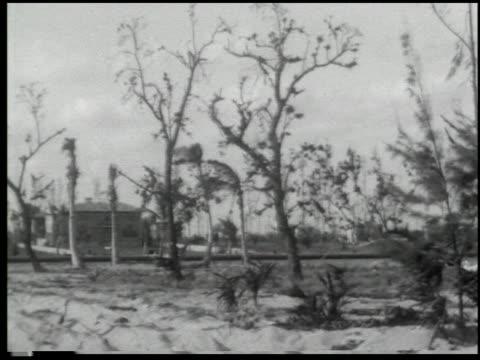 miami: the magic city - 3 of 10 - この撮影のクリップをもっと見る 2371点の映像素材/bロール