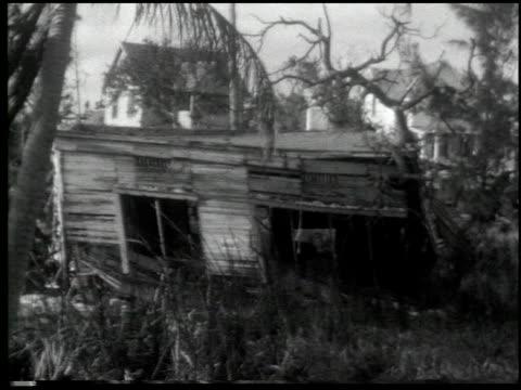 miami: the magic city - 4 of 10 - この撮影のクリップをもっと見る 2371点の映像素材/bロール