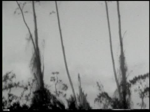 miami: the magic city - 6 of 10 - この撮影のクリップをもっと見る 2371点の映像素材/bロール