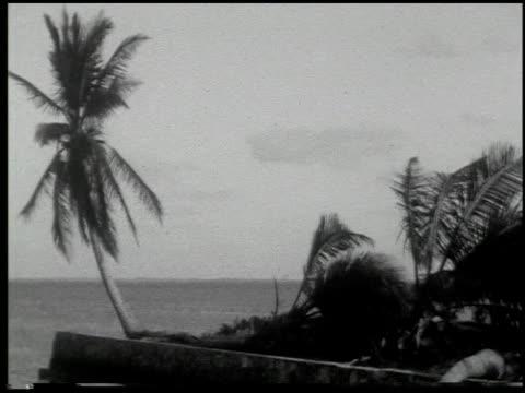 miami: the magic city - 7 of 10 - この撮影のクリップをもっと見る 2371点の映像素材/bロール