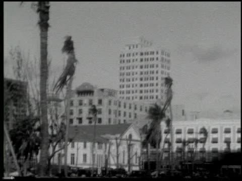 miami: the magic city - 9 of 10 - この撮影のクリップをもっと見る 2371点の映像素材/bロール