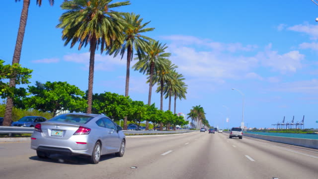 vídeos de stock, filmes e b-roll de miami, united states: driving in the city avenues, point of view from inside a car - ponto de vista de carro