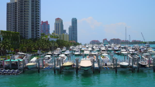 miami, usa: a marina full with boats in the biscayne bay, aerial view point of view from a double decker tourist bus - biscayne bay stock-videos und b-roll-filmmaterial