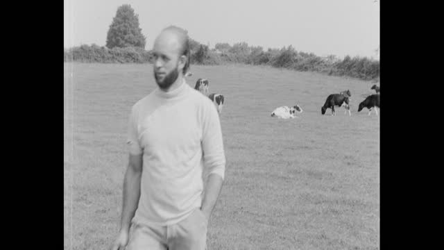 michael eavis, founder of glastonbury festival, walking across field on his worthy farm in pilton somerset, ahead of holding the first festival there - female animal stock videos & royalty-free footage