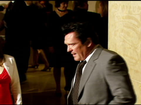 michael madsen at the 57th ace eddie awards on february 18, 2007. - michael madsen stock videos & royalty-free footage