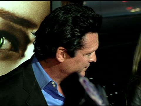 michael madsen at the 'bloodrayne' premiere at grauman's chinese theatre in hollywood, california on january 4, 2006. - michael madsen stock videos & royalty-free footage