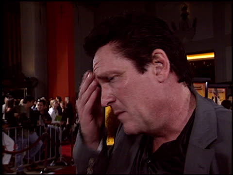 michael madsen at the 'kill bill' premiere at grauman's chinese theatre in hollywood, california on september 29, 2003. - michael madsen stock videos & royalty-free footage
