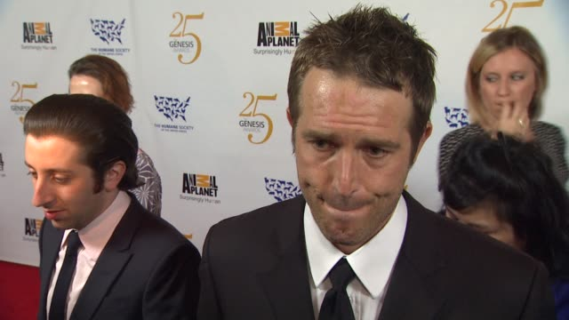 michael vartan on the event pet preps for a natural disaster at the the 25th anniversary genesis awards presented by the humane society of the united... - michael vartan stock videos & royalty-free footage