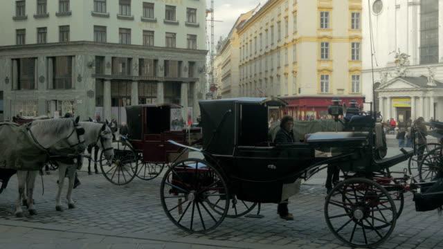 vidéos et rushes de michaelerplatz horse and carriage. - animaux au travail
