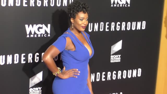 michelle elaine at wgn america's 'underground' season two premiere screening on february 28 2017 in westwood california - westwood stock-videos und b-roll-filmmaterial