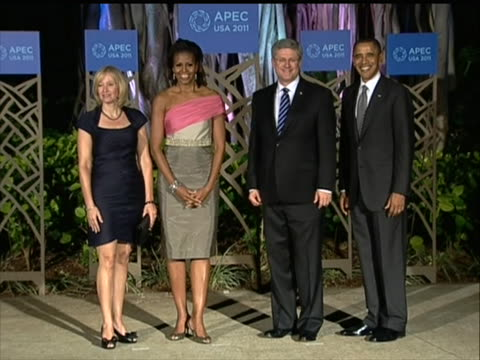 michelle is wearing a beautiful sleeveless dress - pink and grey, wrap top around one arm it is dark and they are outside in front of greenery... - business or economy or employment and labor or financial market or finance or agriculture stock videos & royalty-free footage