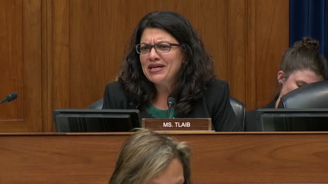 Michigan Congresswoman Rashida Tlaib says at a House Oversight and Reform Committee hearing on migrant family separation that everyone wants to stick...