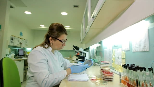 microbiology doctor specialist in laboratory - forensic science stock videos & royalty-free footage