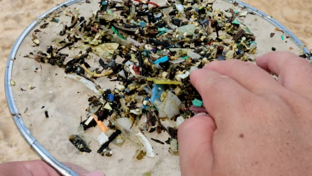 microplastics are very small pieces of plastic that pollute the environment. - aquatic organism stock videos & royalty-free footage