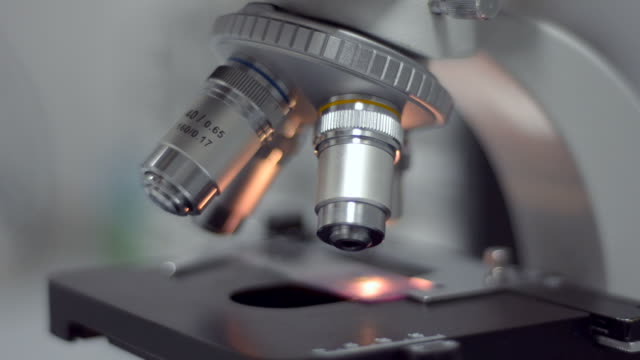 microscope closeup. - high scale magnification stock videos & royalty-free footage