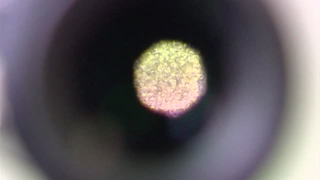 microscope eyepiece - optical instrument stock videos & royalty-free footage