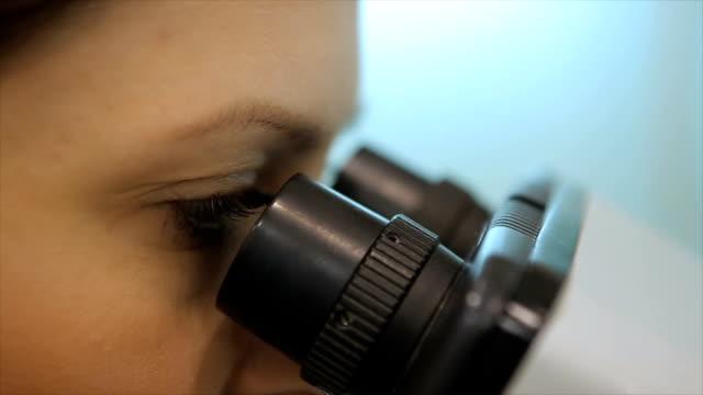 mikroskop im labor - pipette stock-videos und b-roll-filmmaterial