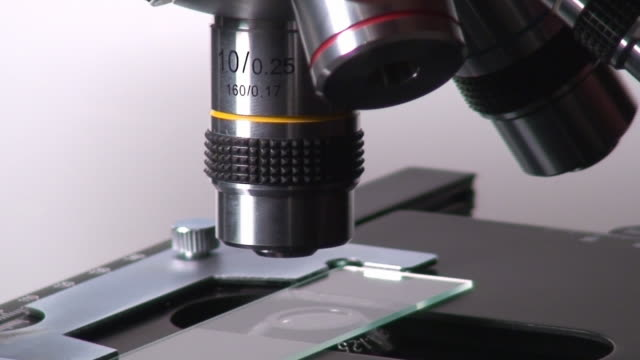 microscope macro spining - high scale magnification stock videos & royalty-free footage