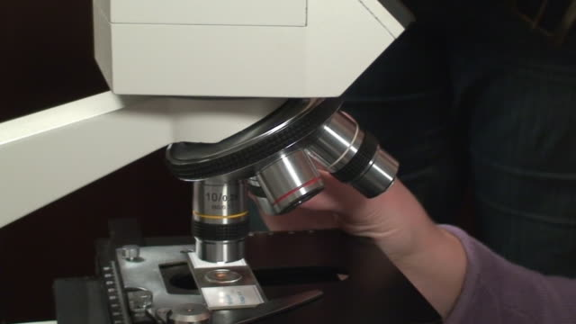 stockvideo's en b-roll-footage met microscope macro - high scale magnification