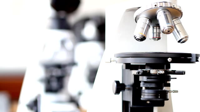 microscope (hd) - high scale magnification stock videos & royalty-free footage