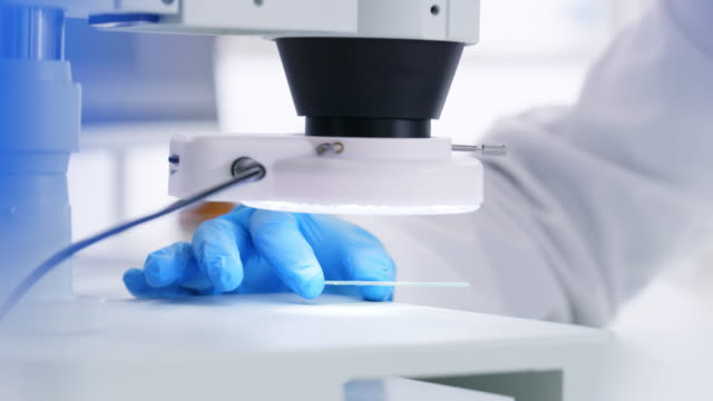vídeos de stock, filmes e b-roll de microscópios são ferramentas essenciais para os cientistas - amostra científica