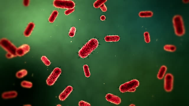 stockvideo's en b-roll-footage met microscopic bacteria medical background - verkoudheid en griep