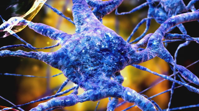 stockvideo's en b-roll-footage met cgi ecu zo microscopic image of nerve cells - high scale magnification