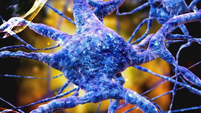 cgi ecu zo microscopic image of nerve cells - high scale magnification点の映像素材/bロール