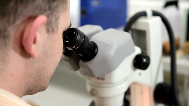 microscopic quality control - campione medico video stock e b–roll