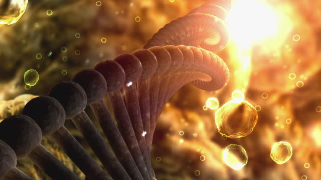 cgi ecu microscopic view of rotating dna strand  - chromosome stock videos and b-roll footage