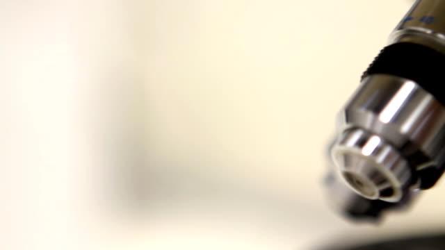 顕微鏡(hd ) - high scale magnification点の映像素材/bロール