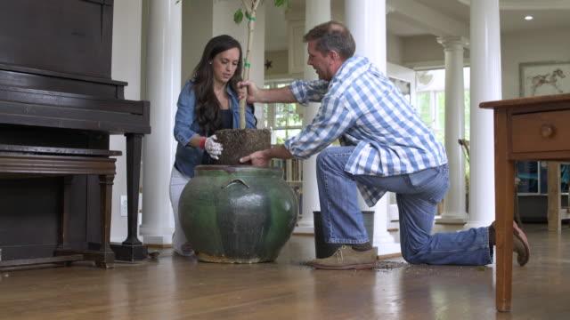vidéos et rushes de mid adult couple planting a tree - gant de jardinage