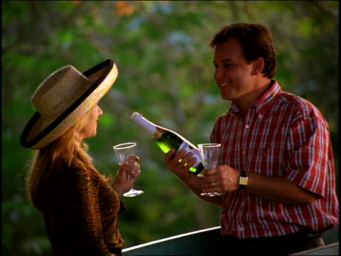 stockvideo's en b-roll-footage met mid adult couple talking about wine at picnic - mid volwassen koppel