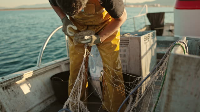 mid adult fisherman removing cuttlefish from net - fisherman stock videos & royalty-free footage