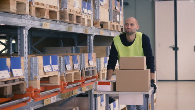 Mid adult man pushing trolley with boxes while looking at merchandise in warehouse