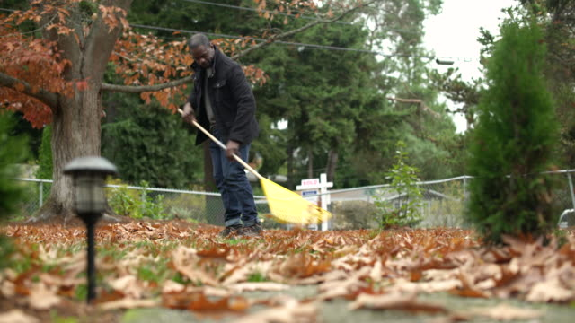 mid adult man raking leaves in domestic garden, panning left. - low angle view stock videos & royalty-free footage
