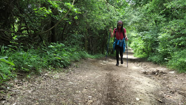 mid adult woman hiking with hiking poles, rear view - hiking pole stock videos & royalty-free footage