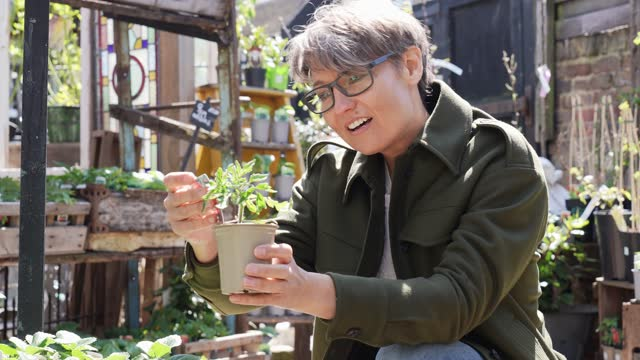 mid adult woman looking at pot plant in garden centre