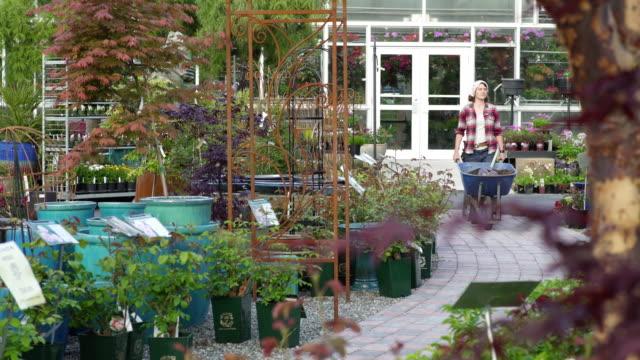 mid adult woman pushing a wheelbarrow in a garden - centro per il giardinaggio video stock e b–roll