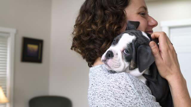 stockvideo's en b-roll-footage met mid adult woman stroking a dog in a living room - alleen één mid volwassen vrouw