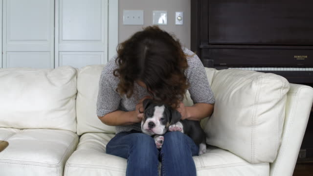 Mid adult woman stroking a puppy while sitting on a couch