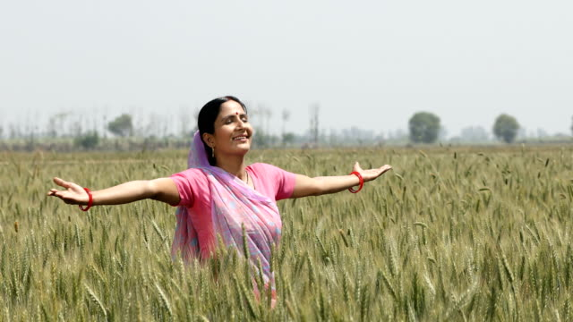MS Mid adult woman with arms outstretched standing in wheat field / Samalkha, Haryana, India