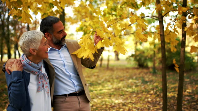 mid aged couple walking in a park. - autumn stock videos & royalty-free footage