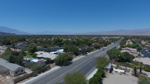 mid century residential street in palm springs - fan palm tree stock videos & royalty-free footage