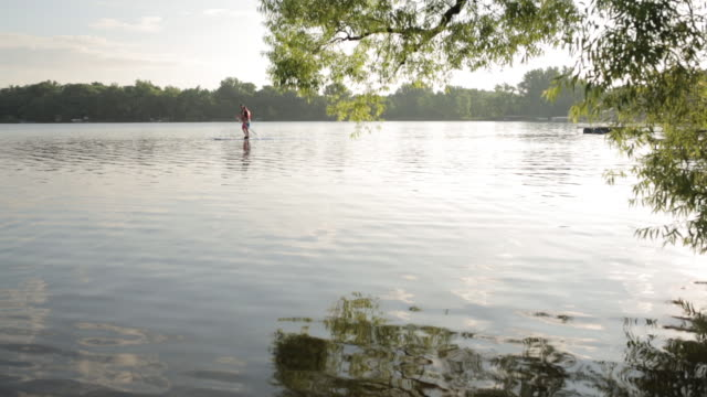 mid distance footage of father and son paddleboarding on lake - mid distance stock videos & royalty-free footage