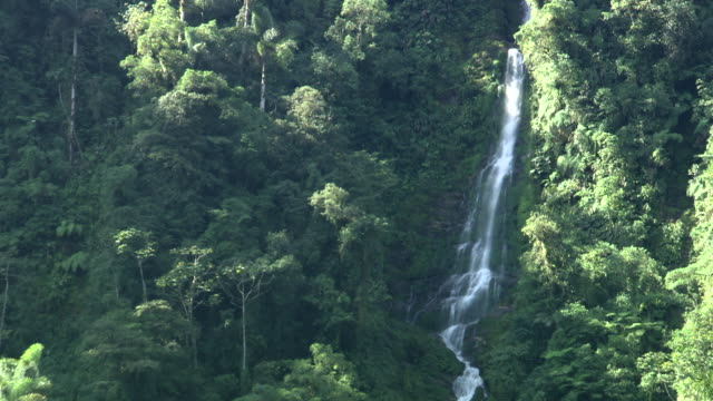 mid of waterfall down cliff edge with trees and foliage, sierra nevada, colombia - colombia stock videos & royalty-free footage